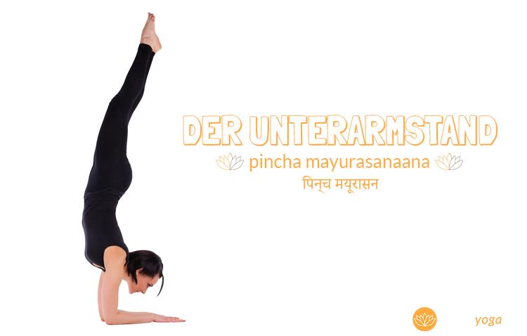 Pincha Mayurasana Yoga Übung