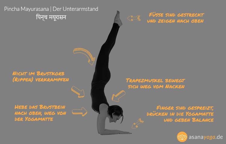 Der Unterarmstand visuell erklärt