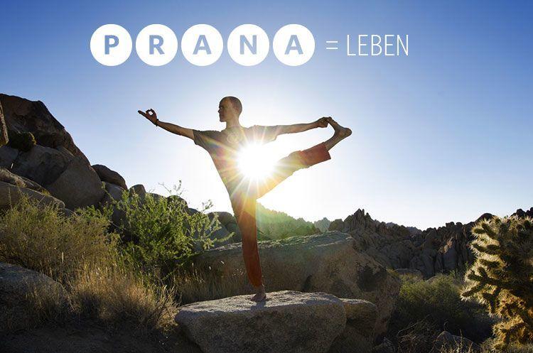 Prana ist Leben