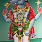 Vishnu Avatar Wildschwein