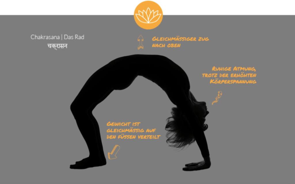 Yoga Rad Chakrasana