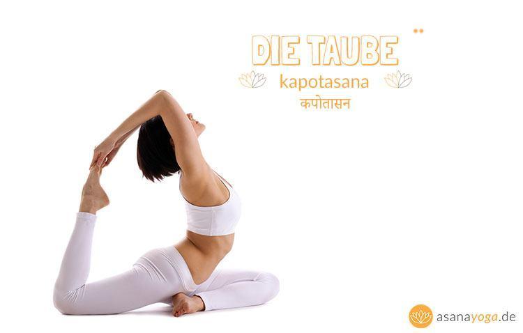 Kapotasana (Yoga Taube) | ASANAYOGA.DE