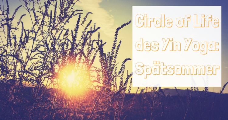 circle-of-life-spaetsommer