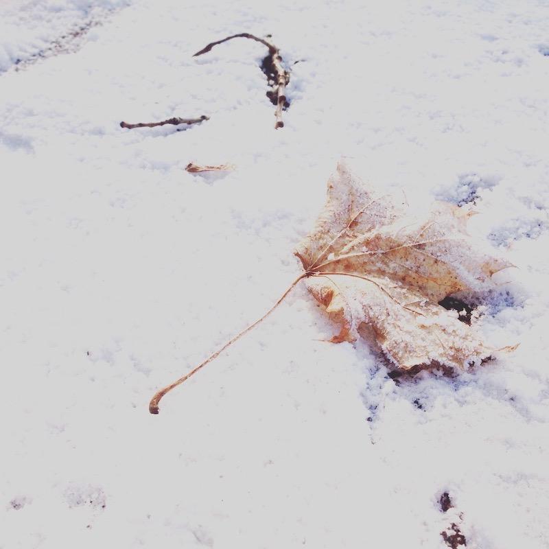 Wintertief besiegen Schnee
