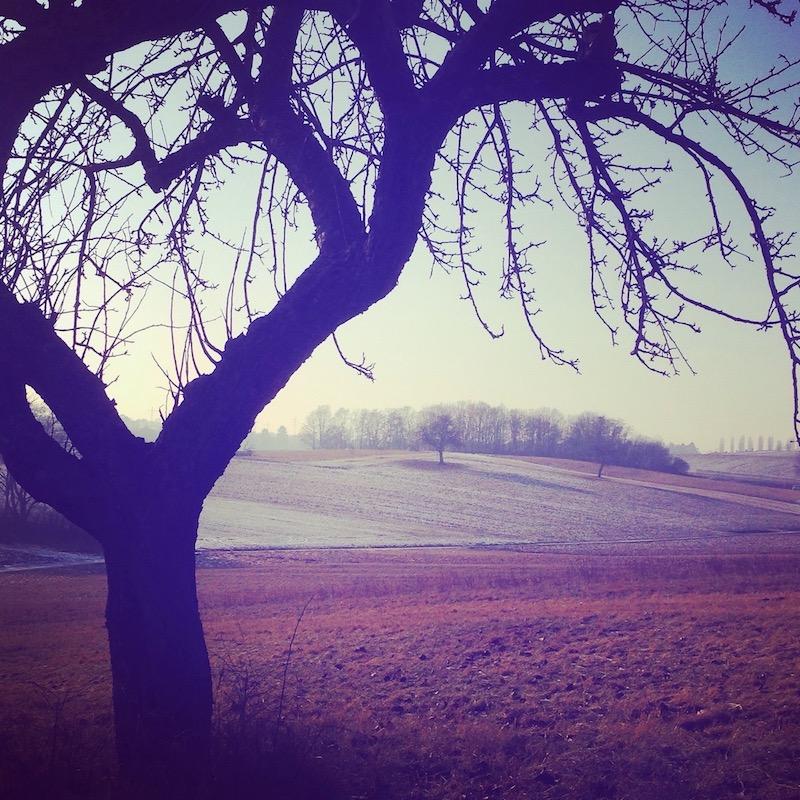 Wintertief besiegen Winterlandschaft