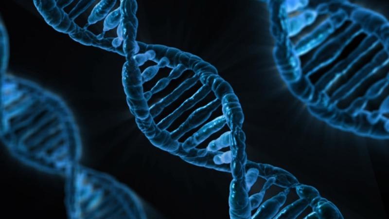 Akasha Chronik DNA