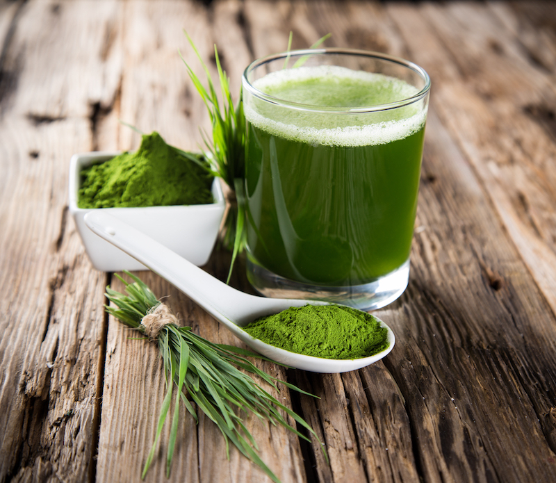 Superfood fuer Yogis Weizengras