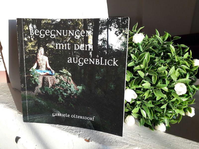 Buchvorstellung Buchcover