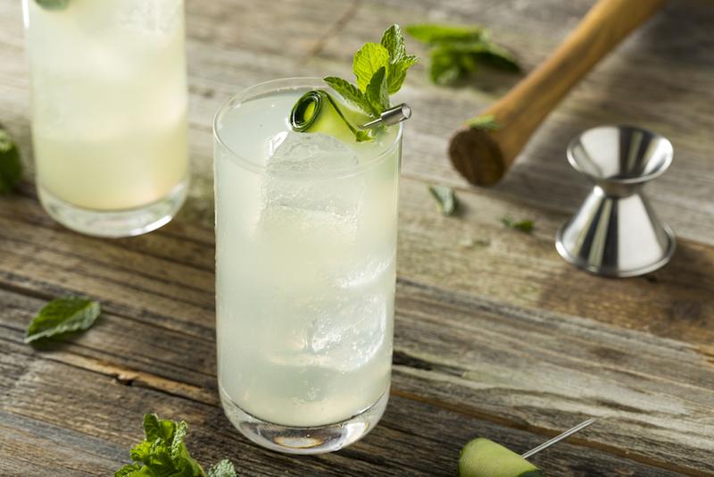 Switchel Apfelessig Gin