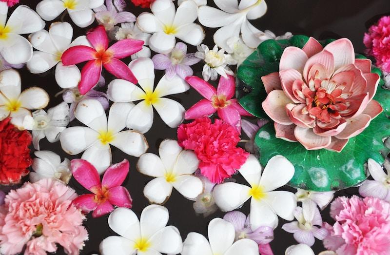 Hautpflege nach Ayurveda: Das sind unsere Tipps